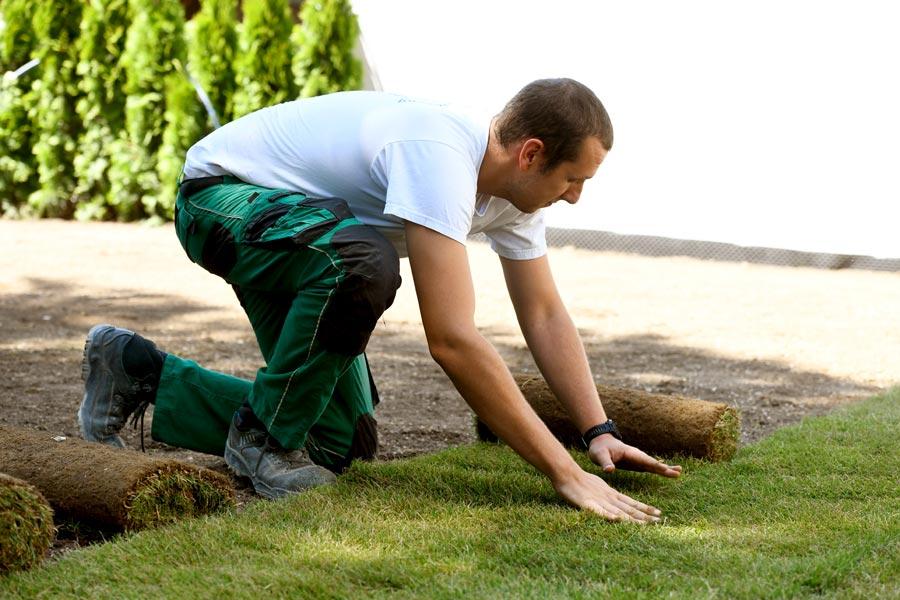 Arbeit als Gärtner und Lanschaftsgärtner